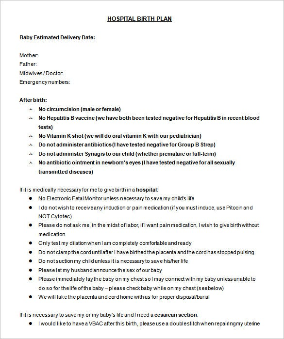 hospital birth plan template word doc