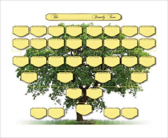 Five Generation Family Tree Template   Free Word Excel Pdf