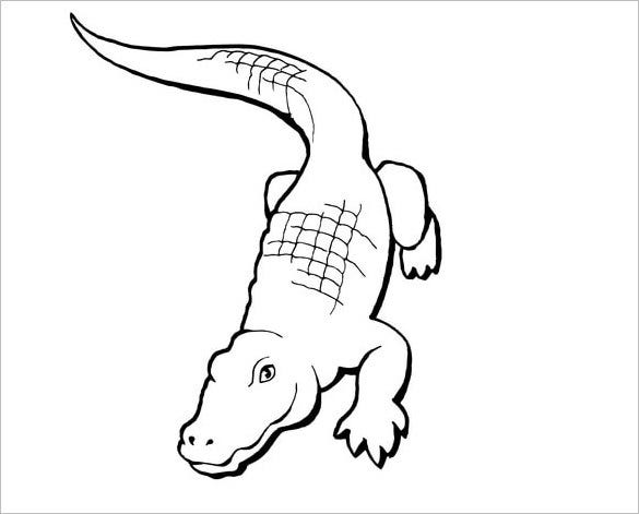 paintable alligator template