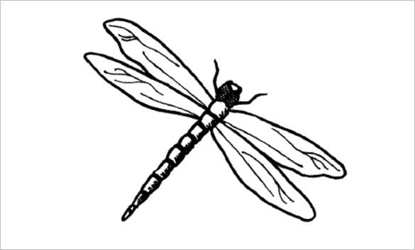 thick dragonfly template