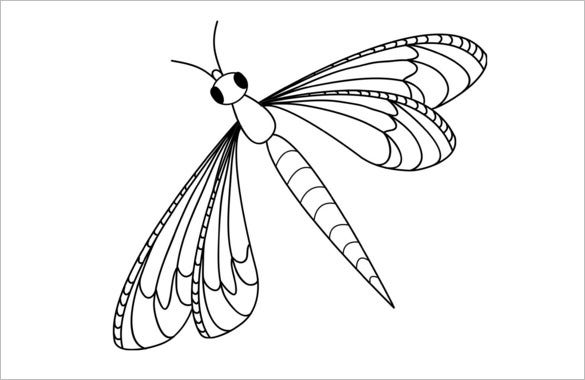 beautiful dragonfly template