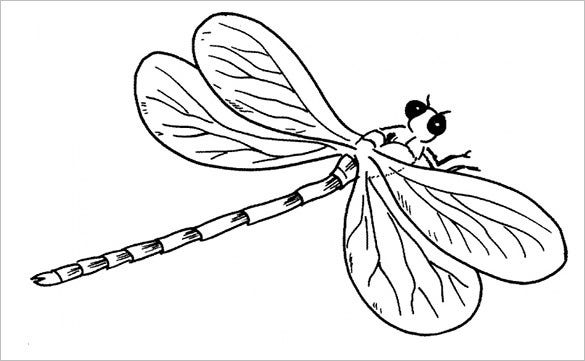 graphic regarding Dragonfly Printable named 10+ Dragonfly Templates, Crafts Colouring Internet pages Absolutely free