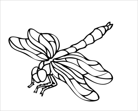 18 Dragonfly Templates Crafts