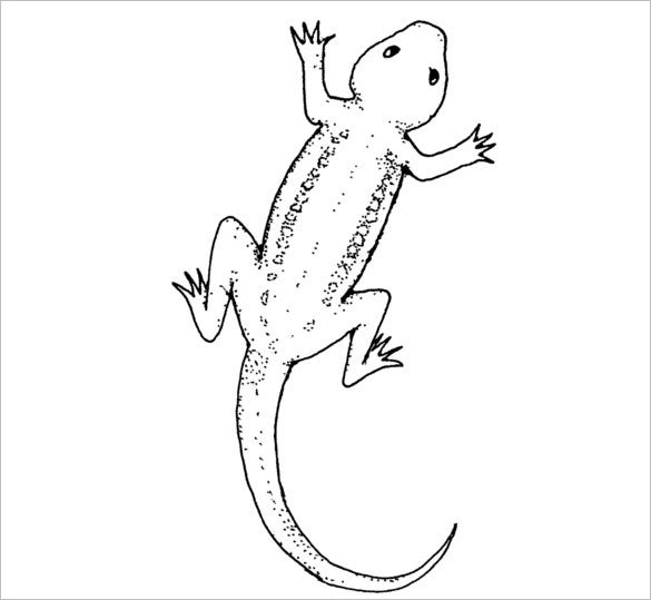 photo about Lizard Template Printable called 20+ Lizard Templates, Crafts amp; Colouring Web pages Free of charge