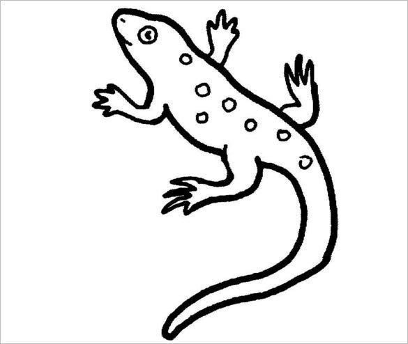 thick lined lizard coloring template