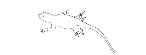 lizard body coloring template