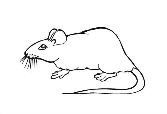 mouse carft coloring page template