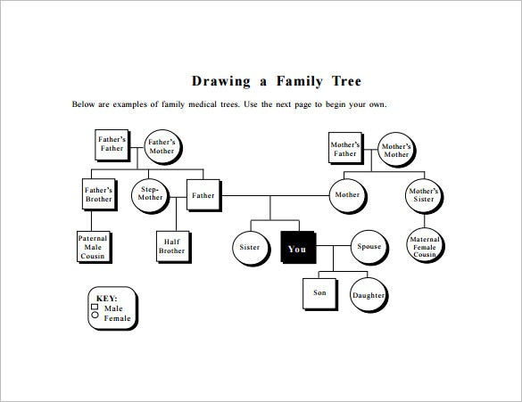 Family Tree Diagram Template   Free Sample Example Format