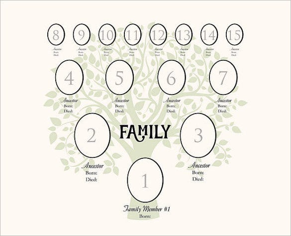 example 4 generation family tree digital template