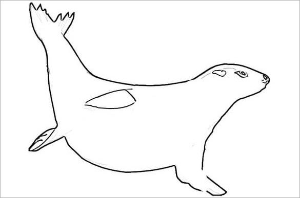 seal template - 28 images - 21 seal templates crafts colouring ...