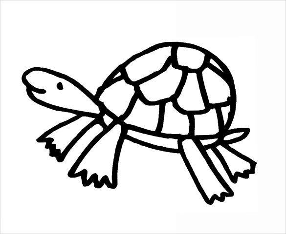 thick bordered turtle template