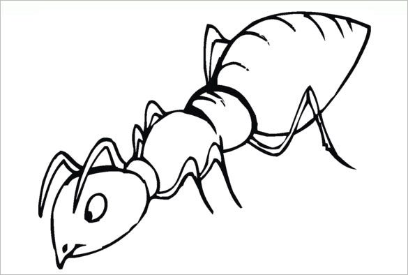 sniffinf ant coloring template