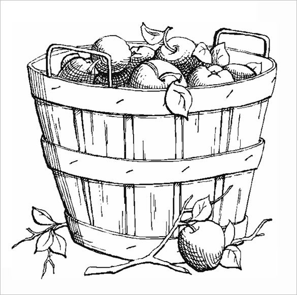 autumn apple basket coloring page