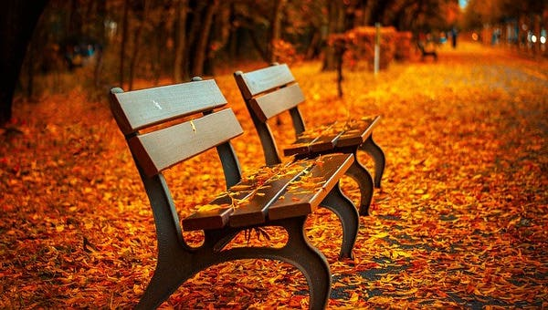 autumncolorrpage