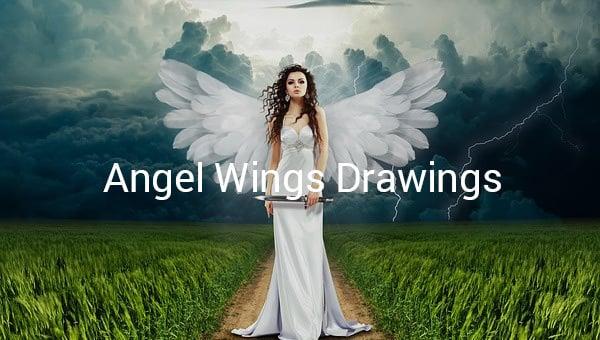 angelwingsdrawings