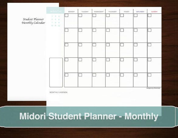 Study Schedule Templates   Free Sample Example Format Download