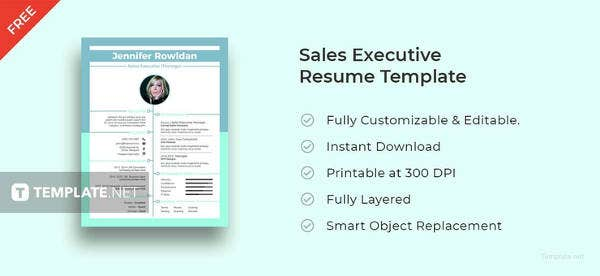 free-sales-executive-resume-format
