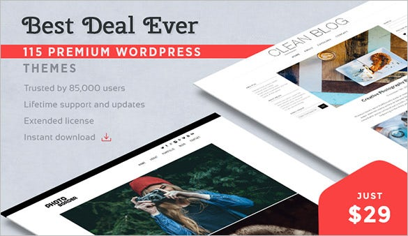 115-Beautiful-WordPress-Themes-for-just-$29