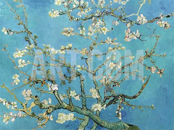 almond branches flower painting