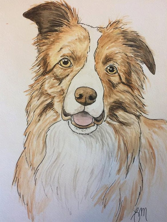 water color pet portrait painting