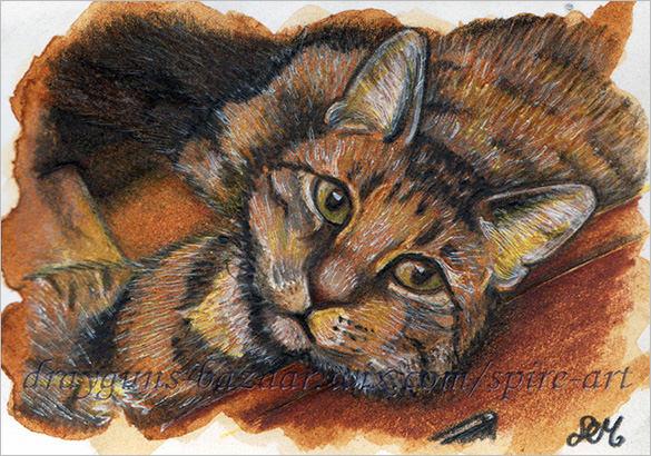 cat the pet portrait painting download