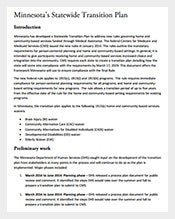 Statewide-Transition-Plan-PDF-Template-Free-Download