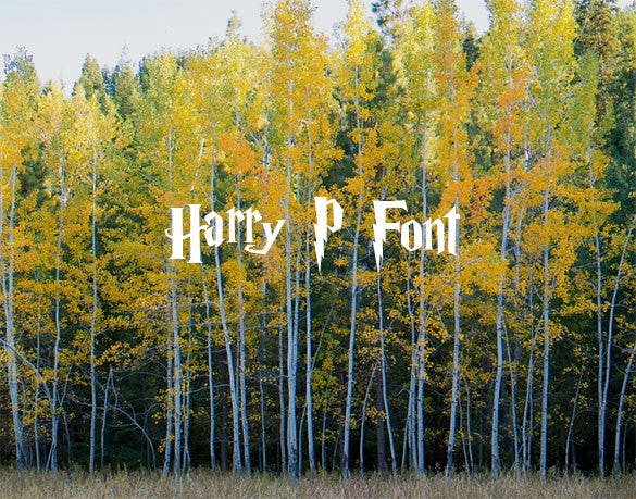 harry p the font free download