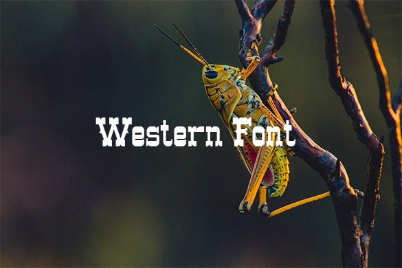 free western font download