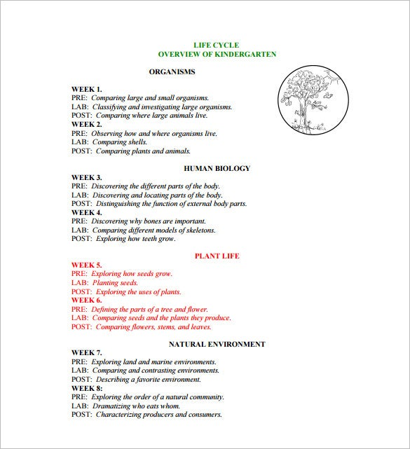 Kindergarten Lesson Plan Template 11 Free Sle Exle Format. Kindergarten Plant Lesson Plan Sle Pdf Template. Kindergarten. Where Animals Live Worksheets For Kindergarten At Clickcart.co