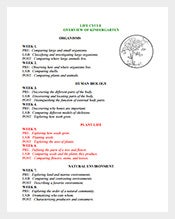 Kindergarten-Plant-Lesson-Plan-Sample-PDF-