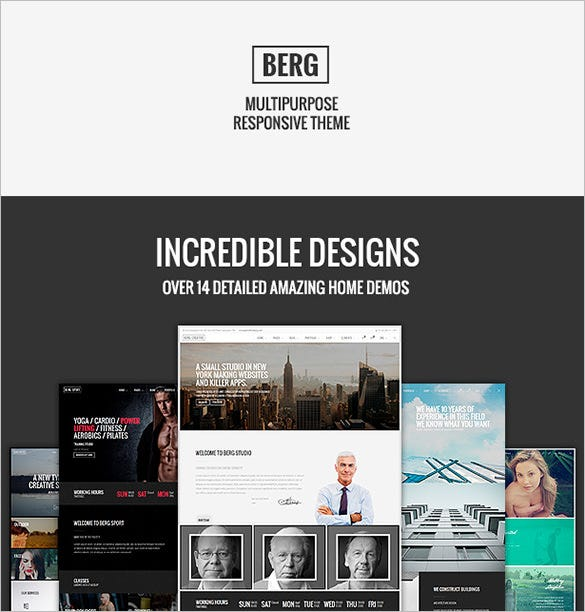responsive wordpress theme for multiporpose use