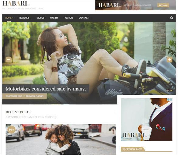 a responsive wordpress blog theme
