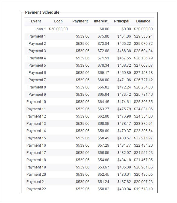 Loan Payment Plan Template  BesikEightyCo
