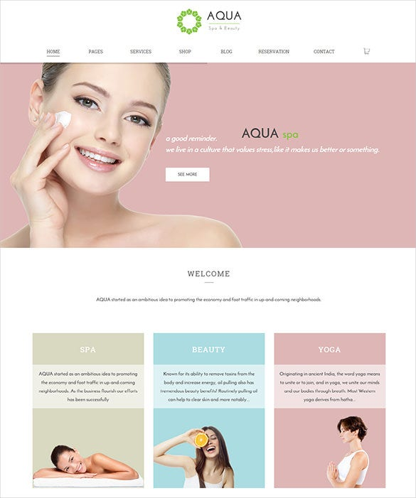 responsive beauty wordpress woocommerce theme