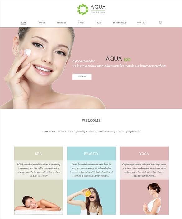 responsive beauty wordpress woocommerce theme