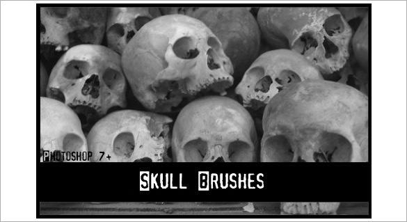 superb skull brushes