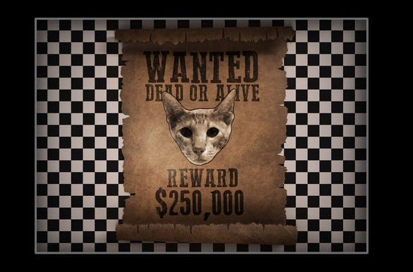 psd old western wanted poster template