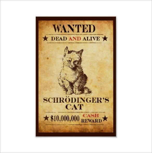 funny cat wanted poster download