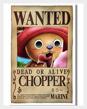Wanted-Chopper-One-Piece-Poster