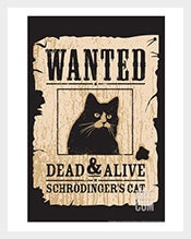 Funny-Wanted-Poster-of-Schrodingers-Cat