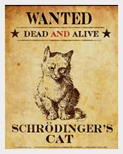 Funny-Cat-Wanted-Poster-Sample