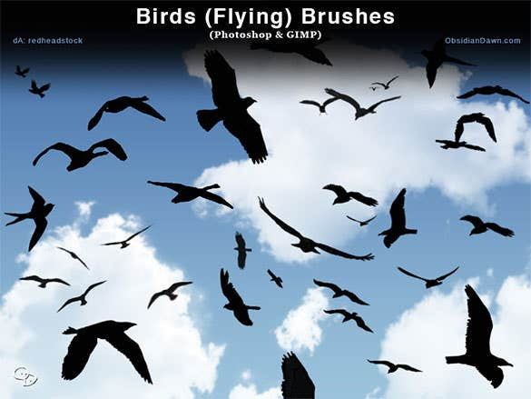 download birds flying photoshop and gimp brushes