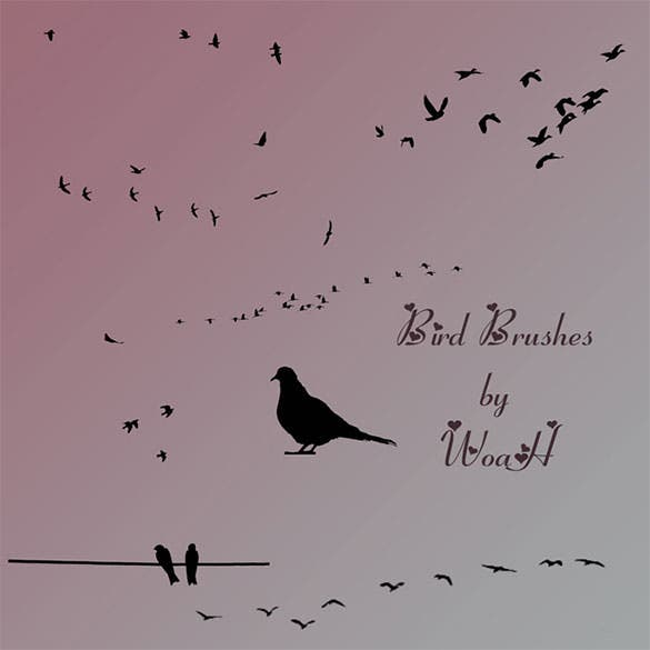 free download bird brushes for photoshop