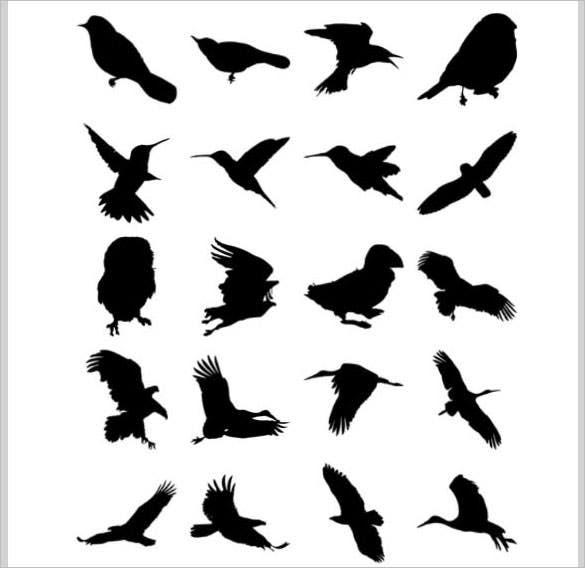 download birds brushes photoshop abr design