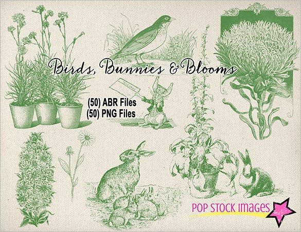 birds bunnies blooms brushes for photoshop