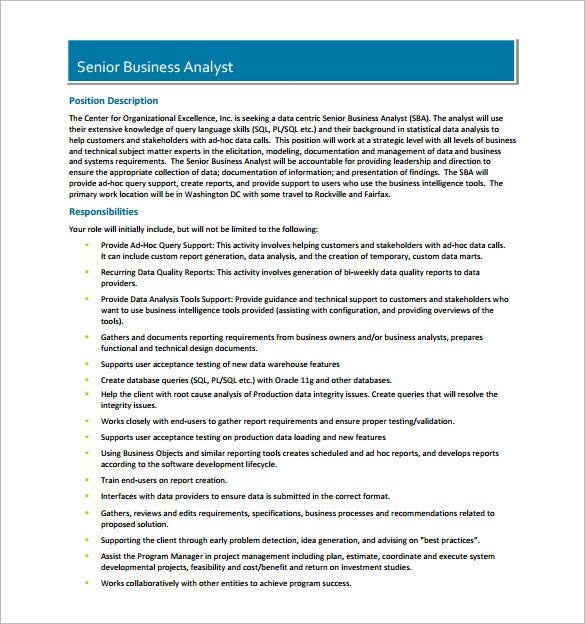Data Analyst Job Description Template   Free Word Pdf Format