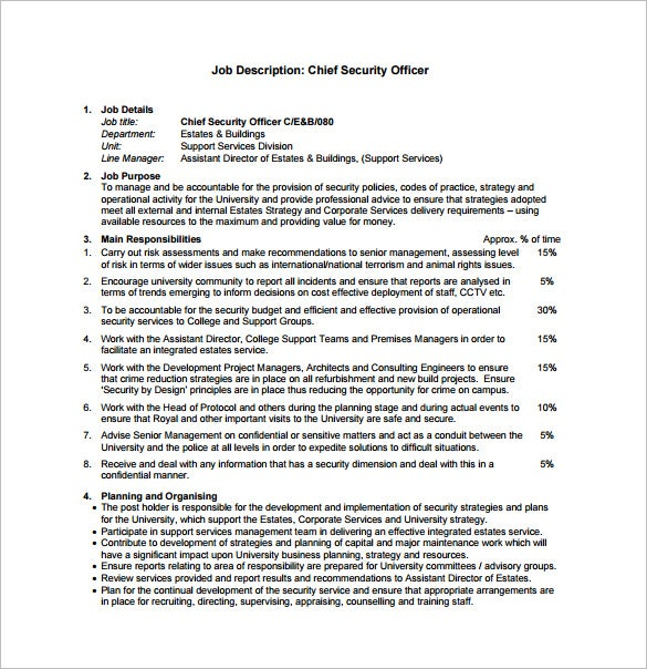chief security officer job description pdf free download