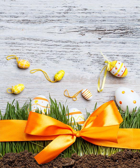 holiday easter background format download