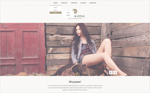 fashion responsive website theme