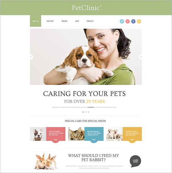 wordpress theme for veterinary physician